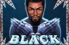 Play Slot mashinasi Black Rider